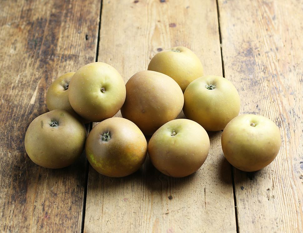 Apples Russett - each