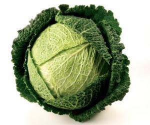 Cabbage - Savoy - Extra large