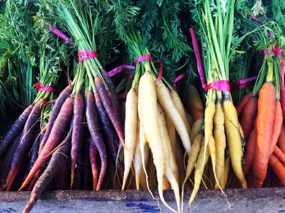 Heritage Bunched Carrot - limited availability