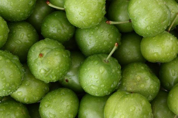Greengages - 500g
