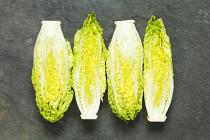 Lettuce Little Gem (pkt 2)