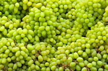Grapes - Green (per 0.5 Kg)