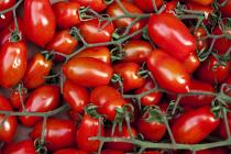 Tomatoes Plum per 0.25 Kg