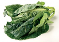 Cabbage - Spring greens