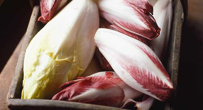 Chicory - each