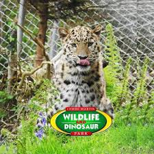 Combe Martin Wildlife Park Donation Boxes