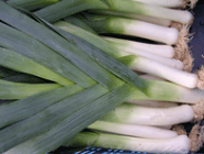 Leeks - New Season - 1kg