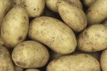 Washed Potatoes - 25kg