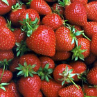 English Strawberries - 400g